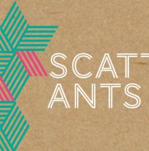 Scattered Ants business card